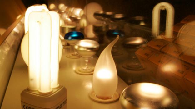 Den Thuner Schülern soll in Energiefragen ein Licht aufgehen.