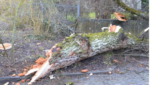 Im Berner Marziliquartier und anderswo richtete der Sturm Schäden an.
