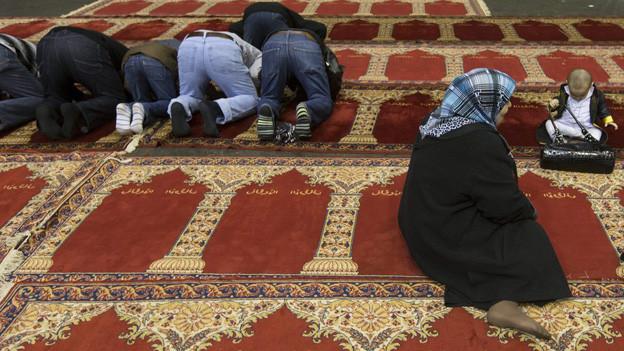 Kritik am geplanten Zentrum für Islam in Freiburg.