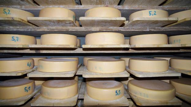 Der Raclettekäse aus Walliser Kellern wird immer beliebter.