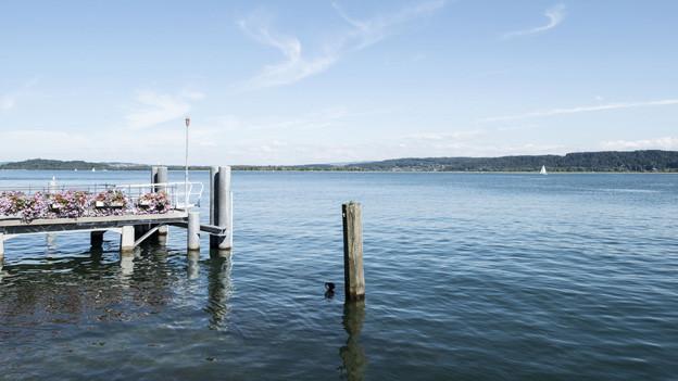 Das südliche Bielersee-Ufer soll eine Schiffsverbindung erhalten.