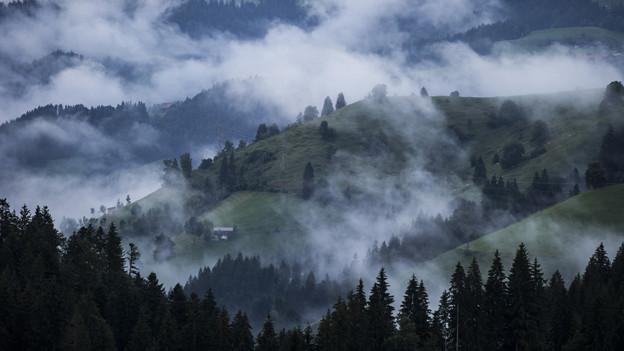 Nebelschwaden ziehen über das Emmental.