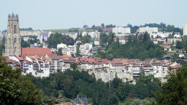 Die Freiburger Altstadt - im Hintergrund das bevölkerungsstarke Schönberg-Quartier.