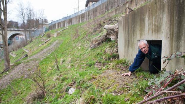 Sein wie ein Bär: Bärenparkleiter Peter Schlup kriecht aus der Bärenhöhle im Bärenpark.