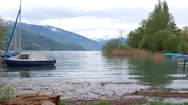 Der Bielersee liegt wieder unter der Schadengrenze.