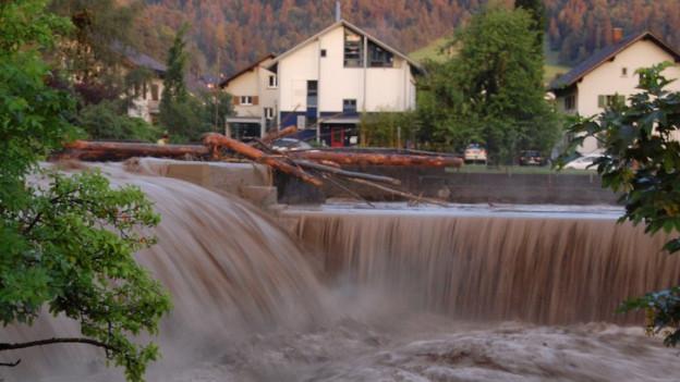 Die Steffisburg brachte am 7. Juni viel Schwemmholz.