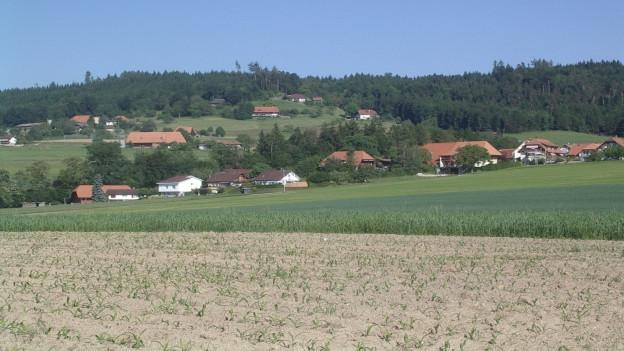 Die Bevölkerung von Seedorf ist gebeten, ab sofort den Wasserverbrauch «so gering wie möglich zu halten».