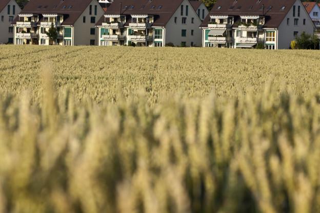 Berner Regierung will nicht das ganze Landwirtschaftsland schützen.
