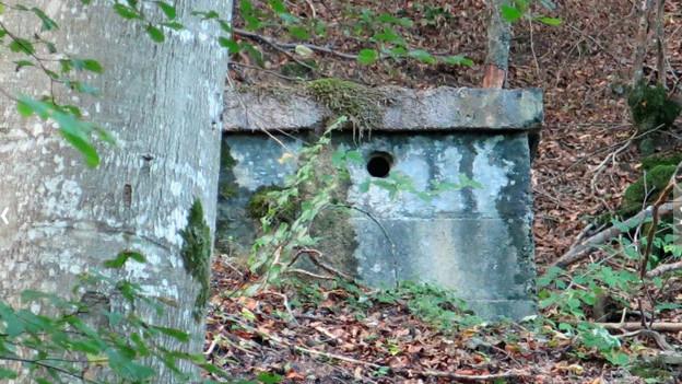 Nutzloser Käfig für eine Quelle: Alte Wasserfassung im Wald
