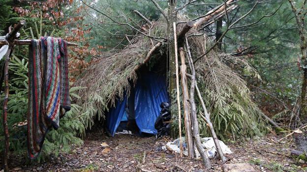 Illegales Waldcamp im Berner Bremgartenwald.