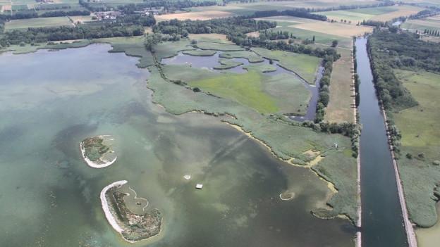 Luftbild See und Naturschutzgebiet
