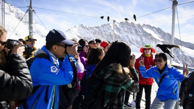 Schneller auf dem Jungfraujoch: Mit der neuen V-Bahn würden die Touristen Zeit gewinnen.