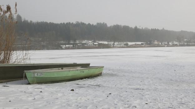 Nach 2012 ist der Moossee wieder einmal gefroren.