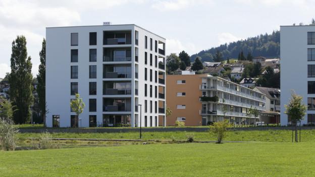 Moderne Wohnungen beim Liebefeldpark in Köniz – für viele zu teuer.