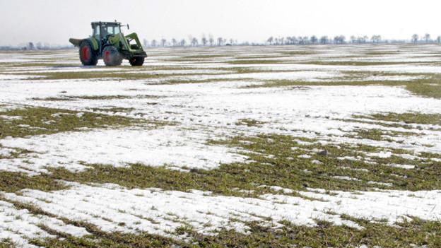 Ein Traktor auf dem winterlichen Feld.
