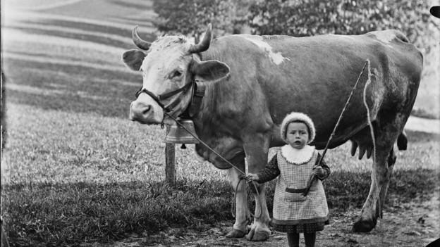 Das Bauernleben ins Bild gerückt: Mädchen mit Kuh.
