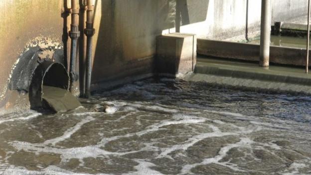 Soll künftig kein gereinigtes Abwasser mehr in den Murtensee gelangen?