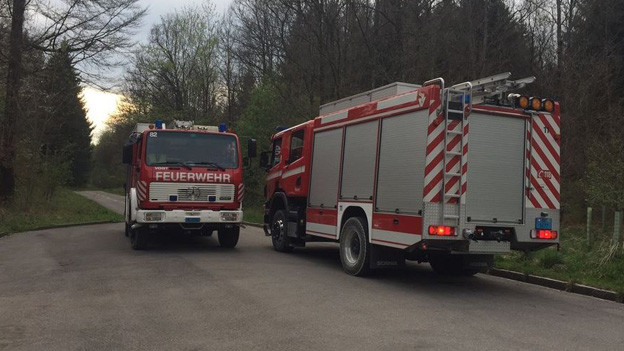 Feuerwehrfahrzeuge im Berner Bremgartenwald.
