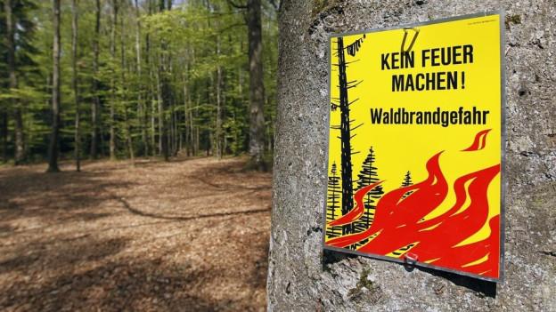 Weil es kaum geregnet hat, ist die Waldbrandgefahr in Teilen des Kanton Berns «erheblich» .