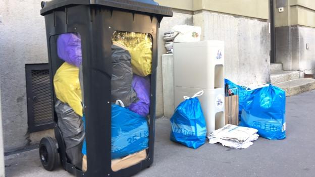 Farbige Abfallsäcke in einem Container mit Sichtfenster.