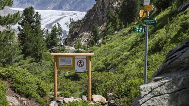 Der Fels im Aletschgebiet bewegt sich 40 Mal langsamer als noch vor einem Jahr.
