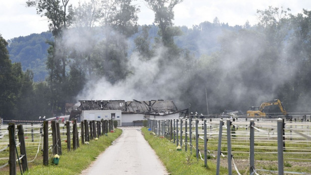 Brand im Pferdegestüt von Avenches.