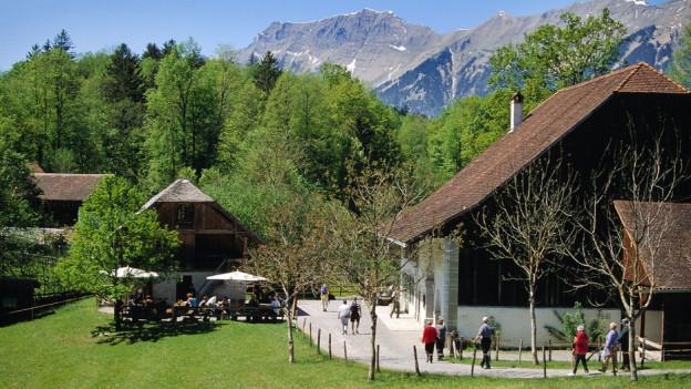 Das Freilichtmuseum Ballenberg an einem schönen Tag, Blick auf Holzchalet und Berge im Hintergrund.
