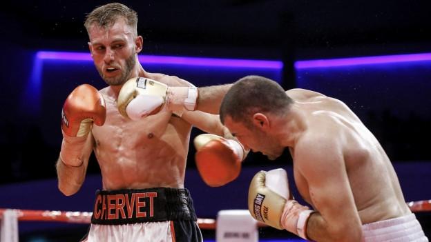 Zwei Boxer im Kampf