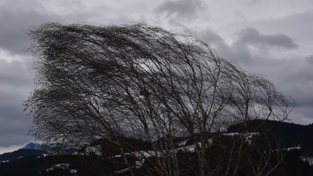 Auch in Langnau im Emmental stürmts.