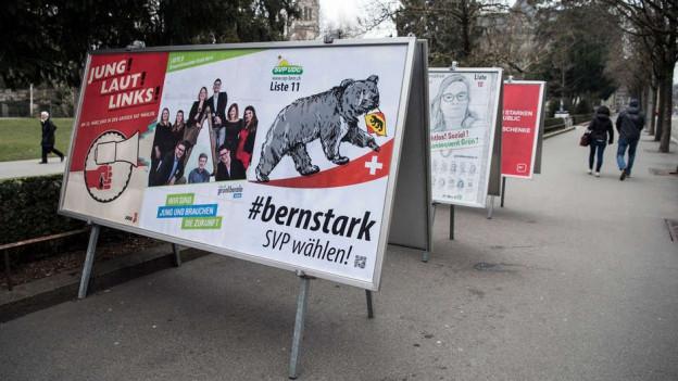 Der Berner Bär zog zu wenig, sagt die Geschäftsführerin der bernischen SVP nach den Wahlen.