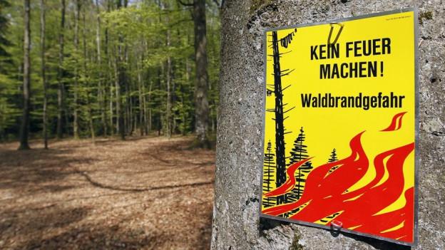 Erwarten viele erst im Sommer: warnungen vor Waldbränden.