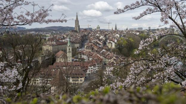 Die Berner Altstadt vom Rosengarten aus gesehen.