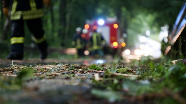 Drohen erneut umstürzende Bäume? Einige Strassen sind bereits gesperrt.