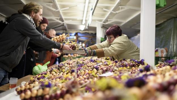 Marktstand mit Zwiebeln