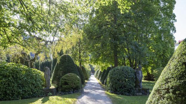Symbolbild; Friedhof in Baden