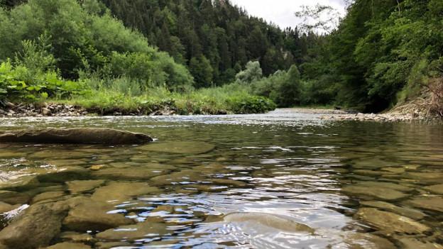 Die Stiftung Landschaftsschutz will ruhige Orte wie den Schwarzwassergraben schützen