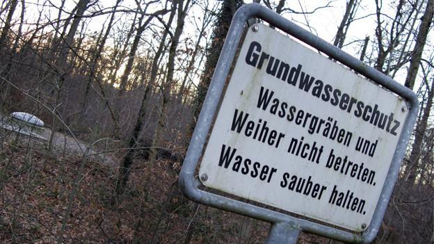 Grundwasserzone im Hardwald