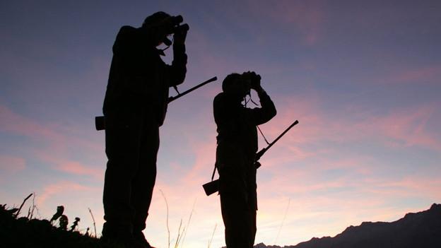 Ist die Jagd in BS bald Vergangenheit?