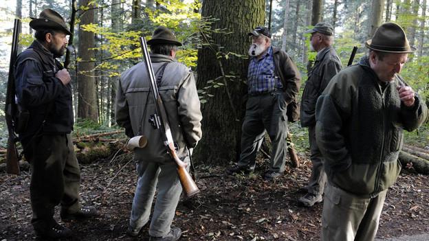 Jäger dürfen weiter durch die Basler Wälder streifen (Symbolbild)