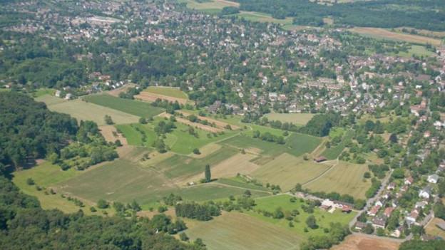Luftbild von Riehen mit Moostal