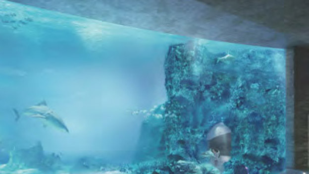 Das Ozeanium des Basler Zoo nimmt Formen an