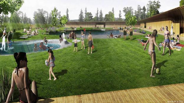 Die ersten Badegäste geniessen das neue Naturbad Riehen