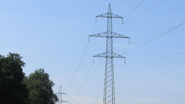 Strommasten auf dem Bruderholz müssen saniert werden