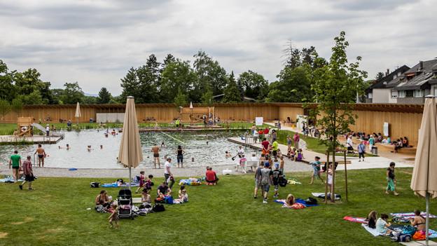 Das Naturbad in Riehen zieht viel Publikum an