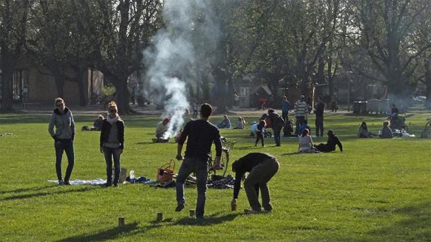 Feiern im Park