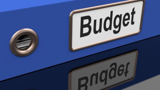 Blauer Ordner mit Budget angeschrieben