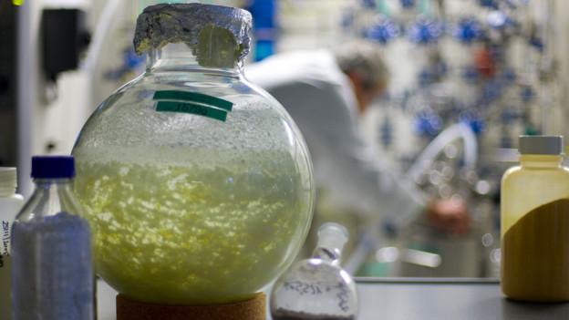 Flaschen im Pharmalabor