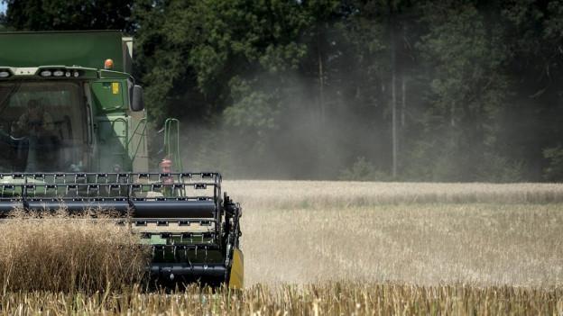 Hitze setzt allen Landwirten zu