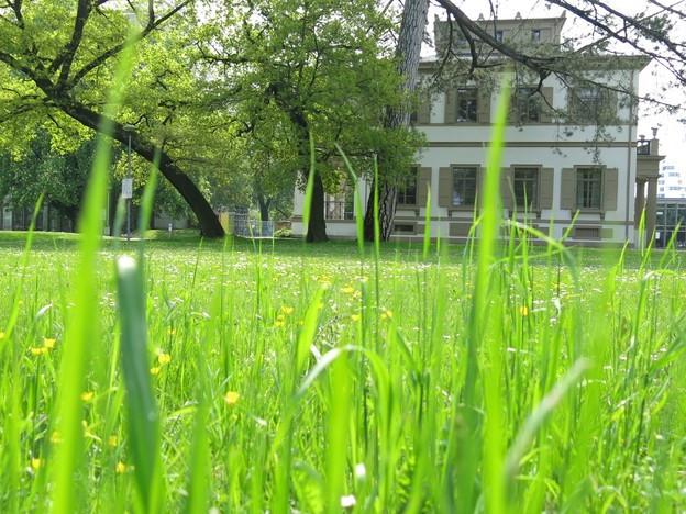 Villa Ehinger