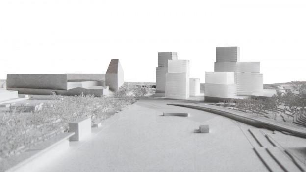 Blick auf die geplanten Hochhäuser in Muttenz.